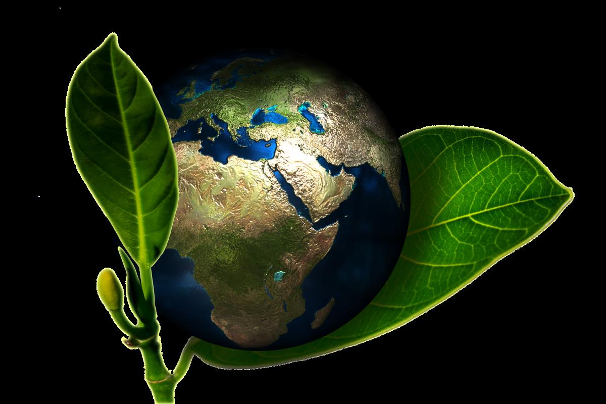 4dbc6673a18c83 LIGERIAA, via sa Commission Energie-environnement, est fortement impliquée  dans 2 actions collectives initiées et portées par Coop de France Ouest.